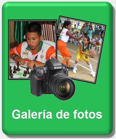icono galería de fotos nueva 2