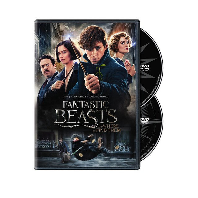 Pre-Order: Fantastic Beasts and Where to Find Them DVD