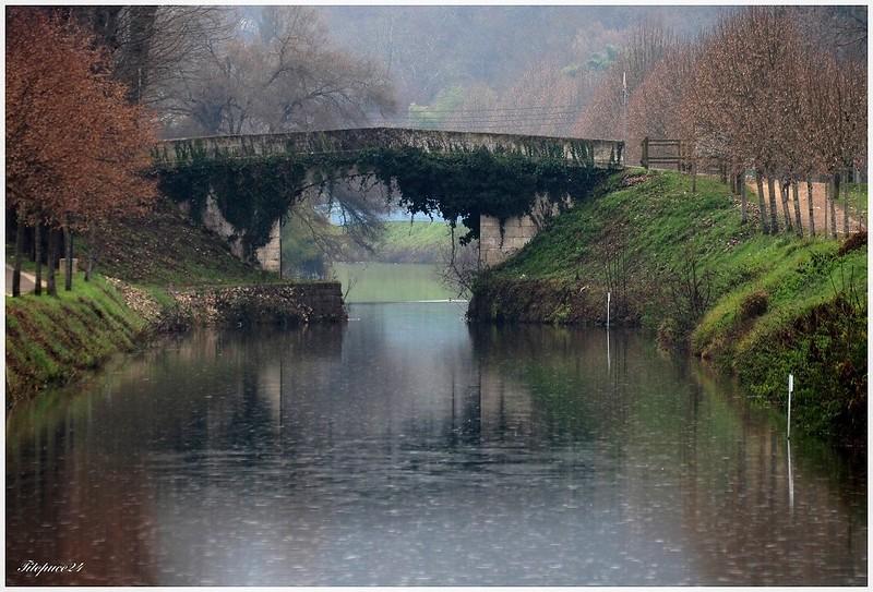 Le vieux pont de lierre sous la puie 31876238110_eb1684117e_c