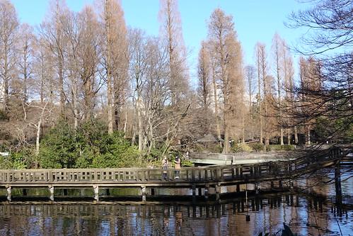 Inokashira Park 01