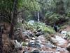 Dans le ravin de remontée depuis le Vaglie : dans la forêt végétale