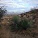 Arizona Trail Walk - Campo Bonito Mine