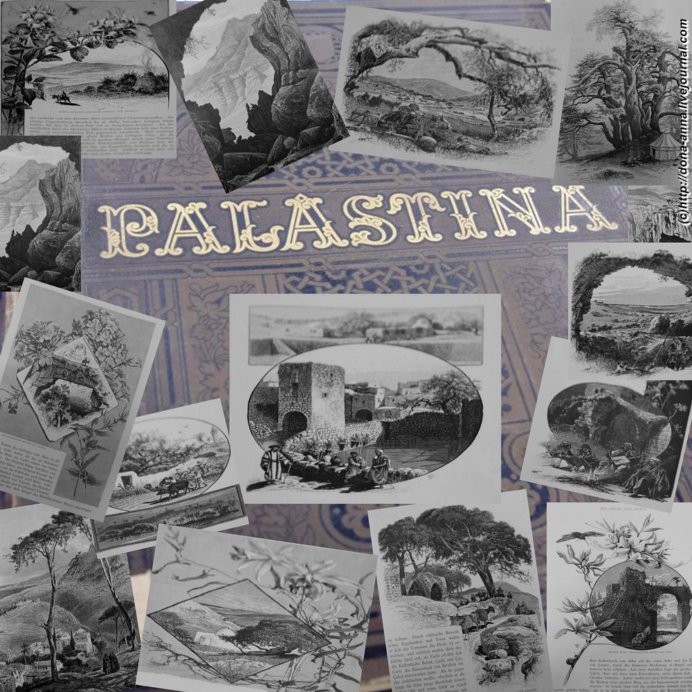 Palastina-collage2-a