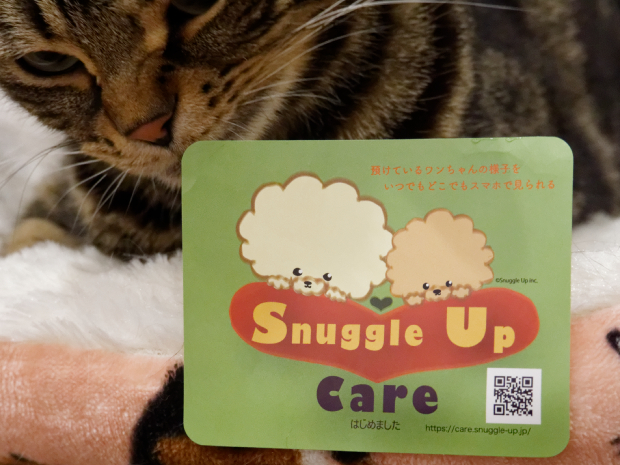 Snuggle Up Care(スナグルアップケア)はじめました!