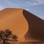 NAMIBIA & KRUGER por libre: 21 días Very WILD