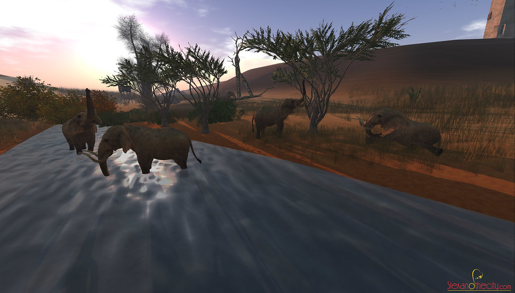 Second Life Safari with friends
