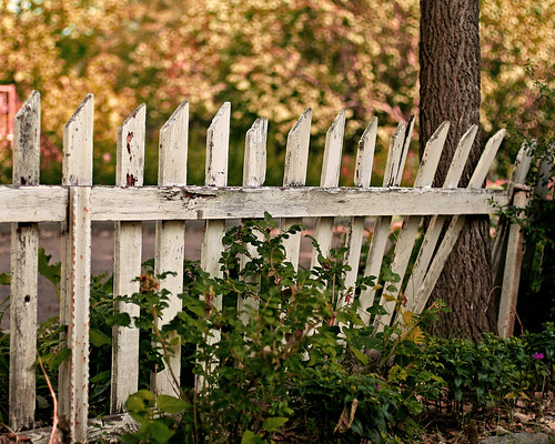 White Picket Fence | by 3rd foundation