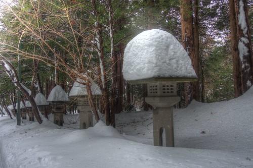 Hokkaido-Jingu Shrine on DEC 26, 2016 (14)