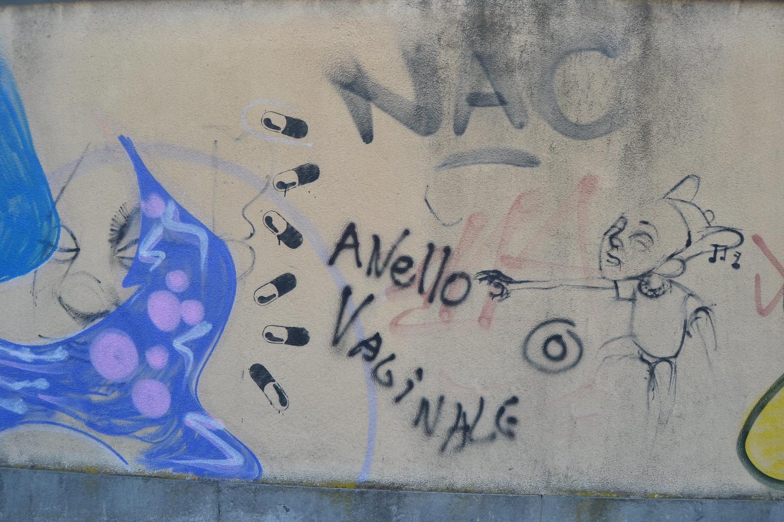 Torino, paseo con Elisa 23/01/2017. fotos de zeroanodino para URBANARTIMAÑA