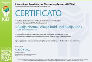IGEF-Zertifikat-BAK-IT