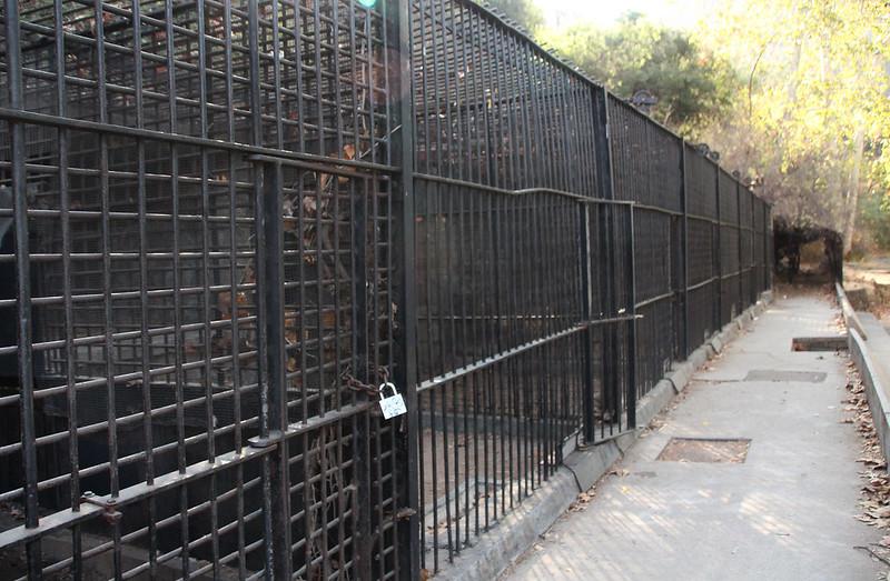 Abandoned Zoo