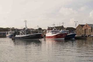 HOWTH FISHING FLEET [OCTOBER 2015]--109463 | by infomatique