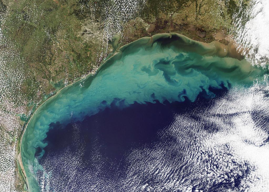 美國東岸佛羅里達州的藻華現象。圖片來源:Holli Riebeek, NASA's Earth Observatory(public domain)