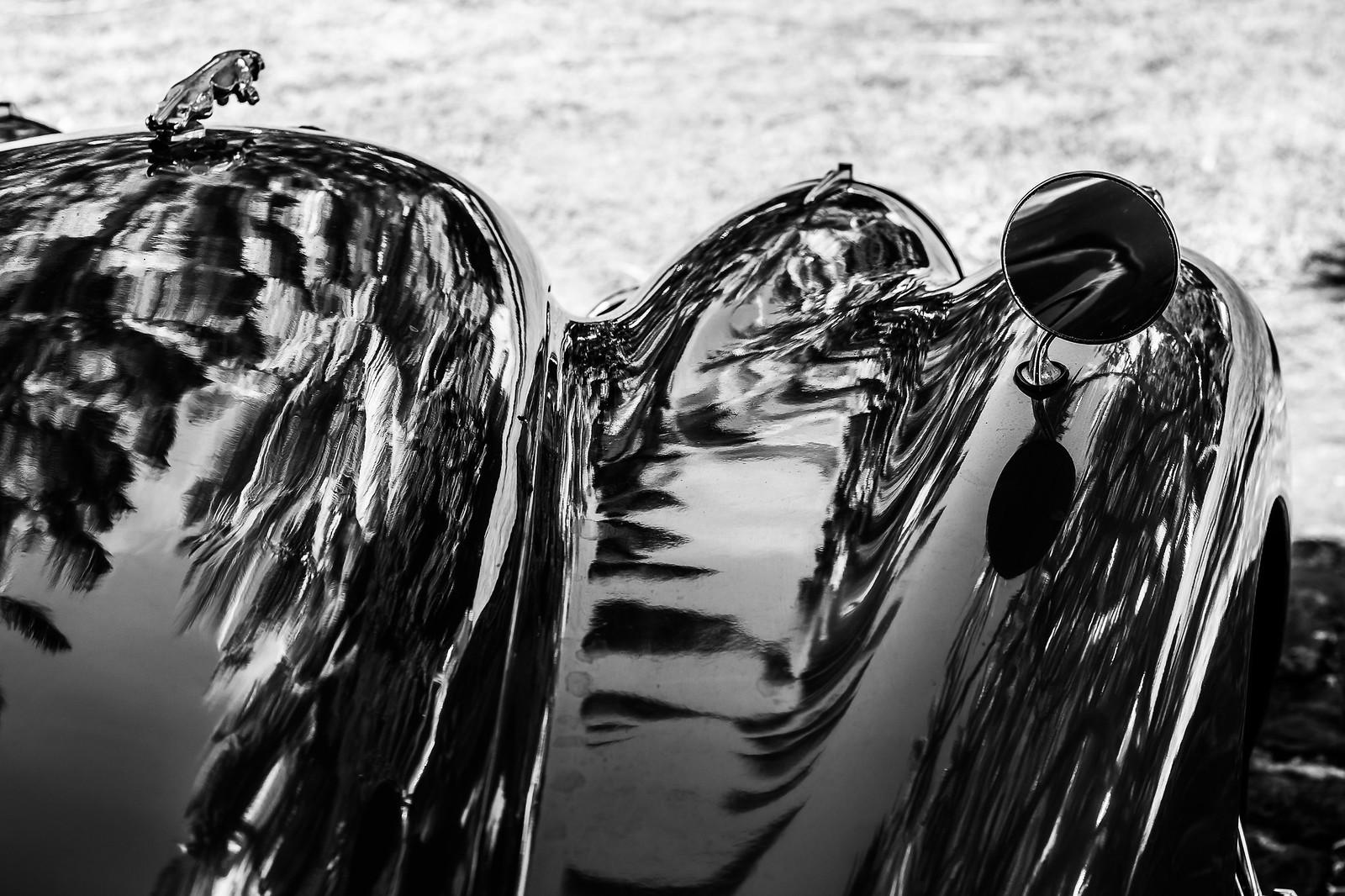 Reflets des palmiers Jaguar XK120 Roadster - Chez Tante Athalie - Mon Repos - Pamplemousses - Ile Maurice | by ric_burger