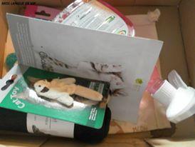 Kitty Box de Novembre