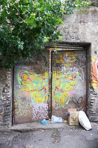 door butterfly