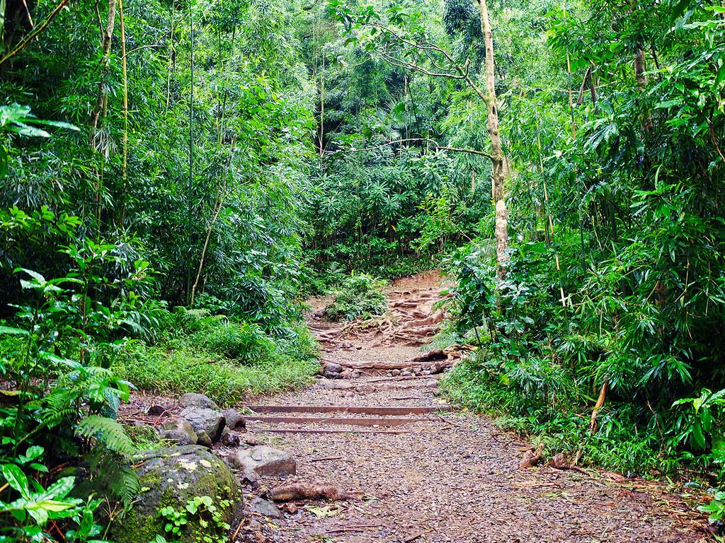 Oahu-(129)
