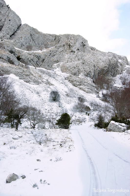 Дорога под снежным покрывалом