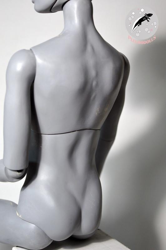 ~WIP hermaphrodite~ Proto monté: He's alive!! p.8 - Page 8 31991890674_af58eab0bc_c