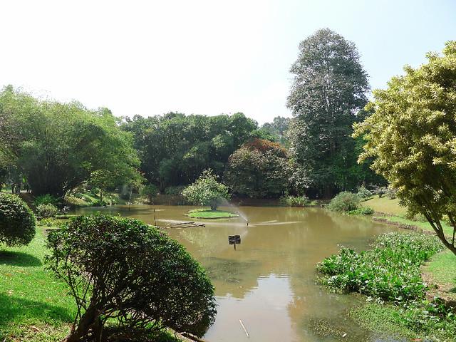 123-Kandy