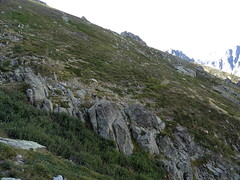 Le vallon de Renellucciu