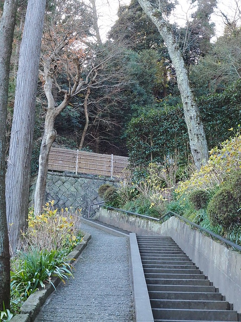 walking around Kamakura 2016.12.25 (38)