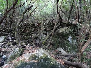 La 2ème carbonara du sentier de Petra Stretta