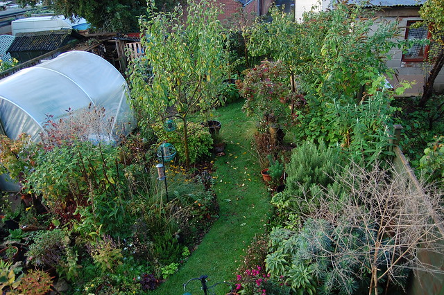A view from an upstairs window looking over the back garden