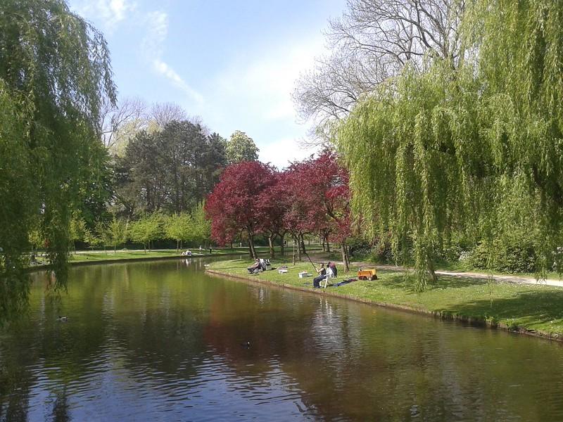 Parkvissers in Vrijbroekpark te Mechelen