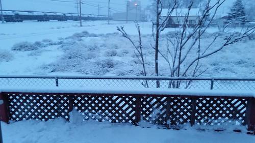 January Snow Round 2
