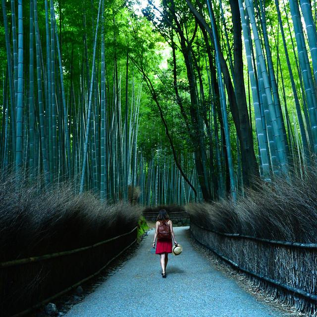 Arashiyama, el bosque de bambu de Kioto, una maravilla