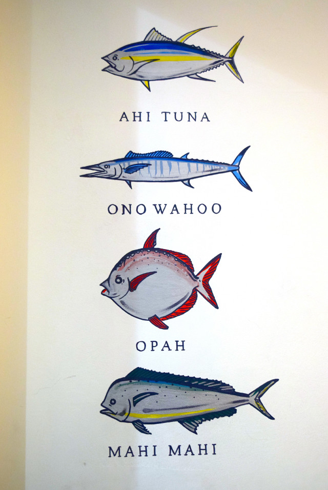 Fish Illustrations at Island Poké, Soho | www.rachelphipps.com @rachelphipps