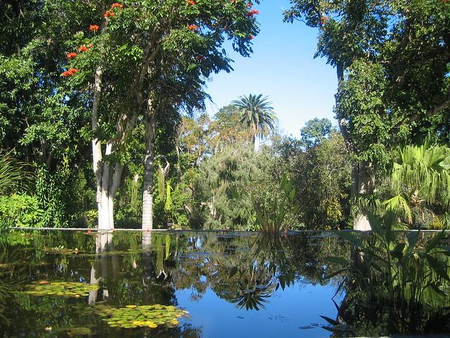 Botanic gardens puerto de la cruz explore timniblett 39 s ph flickr photo sharing - Botanical garden puerto de la cruz ...