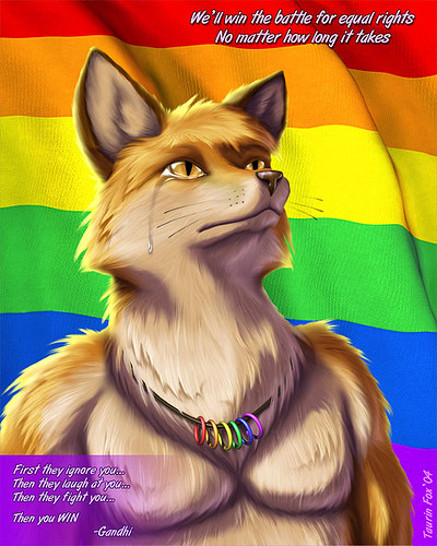 Fox Is Sad About Discrimination Against Gay People Flickr