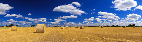 Hay Bales - Full Panoramic | by Stu Worrall Photography