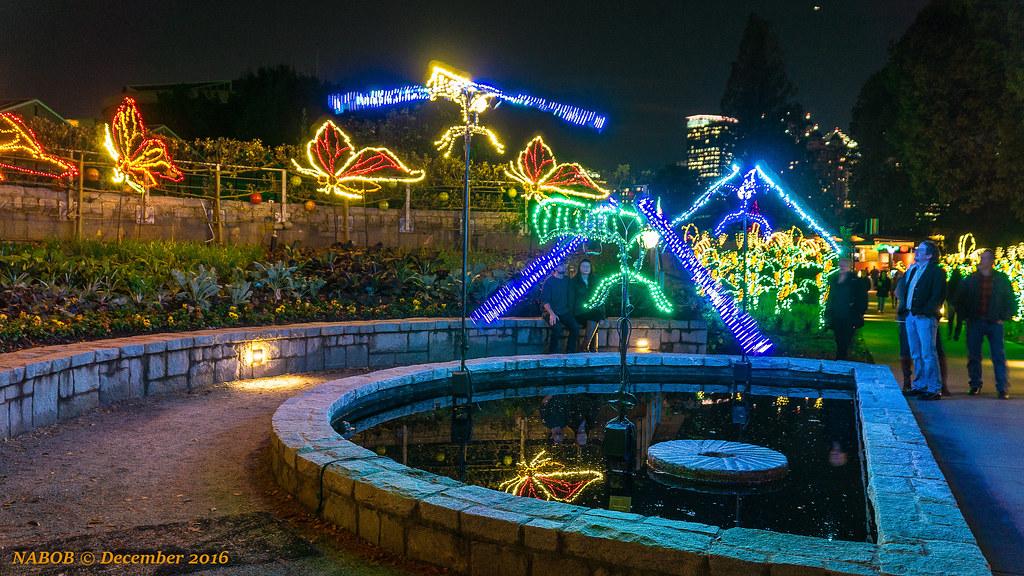 Atlanta, GA: Atlanta Botanical Garden Garden Lights (Chris… | Flickr