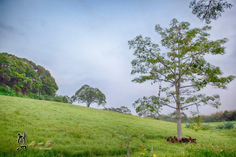 大南窩|南窩綠丘