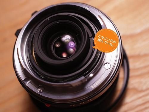 Color-Skopar 35mm F2.5 PII (GXR A12 50mm Macro) 2