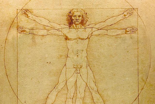 da vinci's vetruvian man sketch