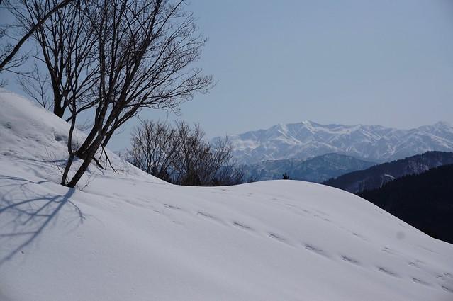 """Mt, """"HAKUSAN"""" from """"NISHIYAMA"""""""
