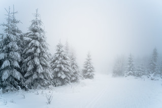 Whiteout | by martinstelbrink