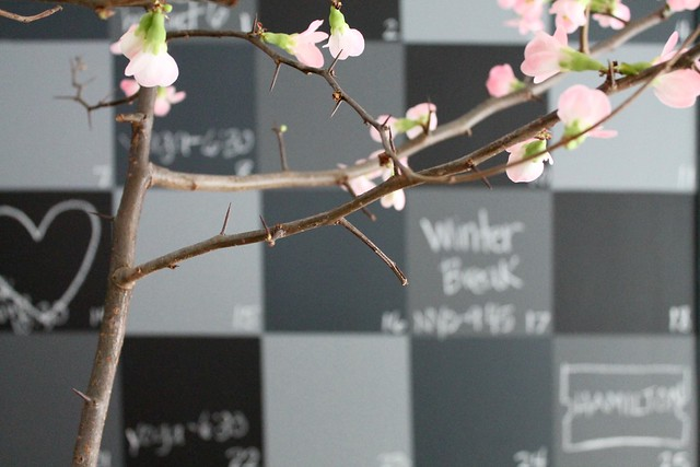 DIY Chalkboard Wall + Quince Branches