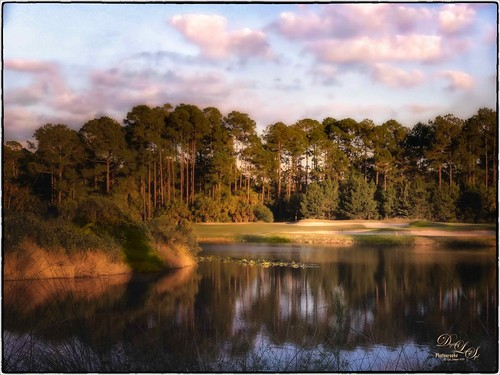 Image of a golf hole in Florida