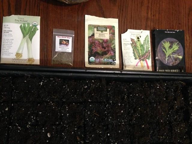 Seed Tray #1