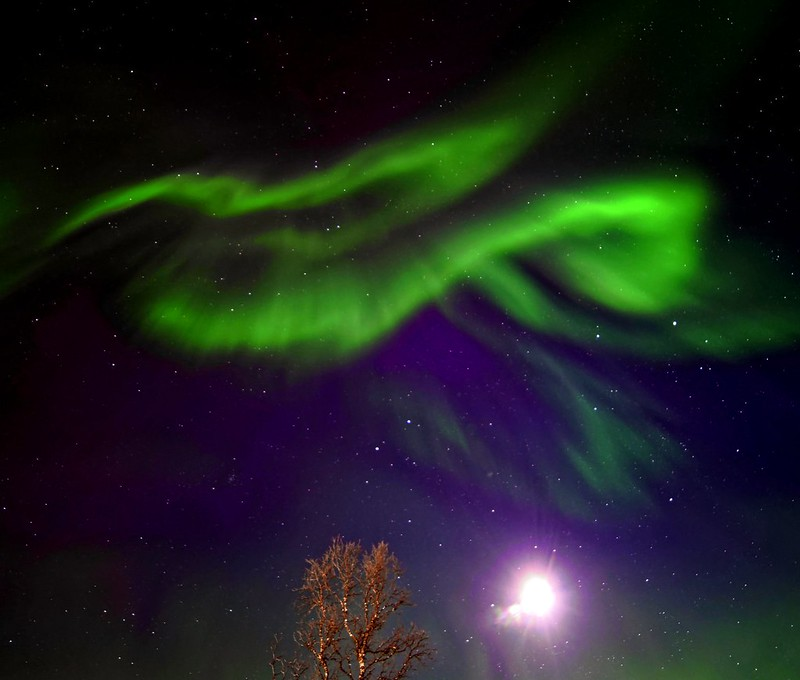 Wavy lines, the lights were dancing all over the sky #auroraborealis #norway