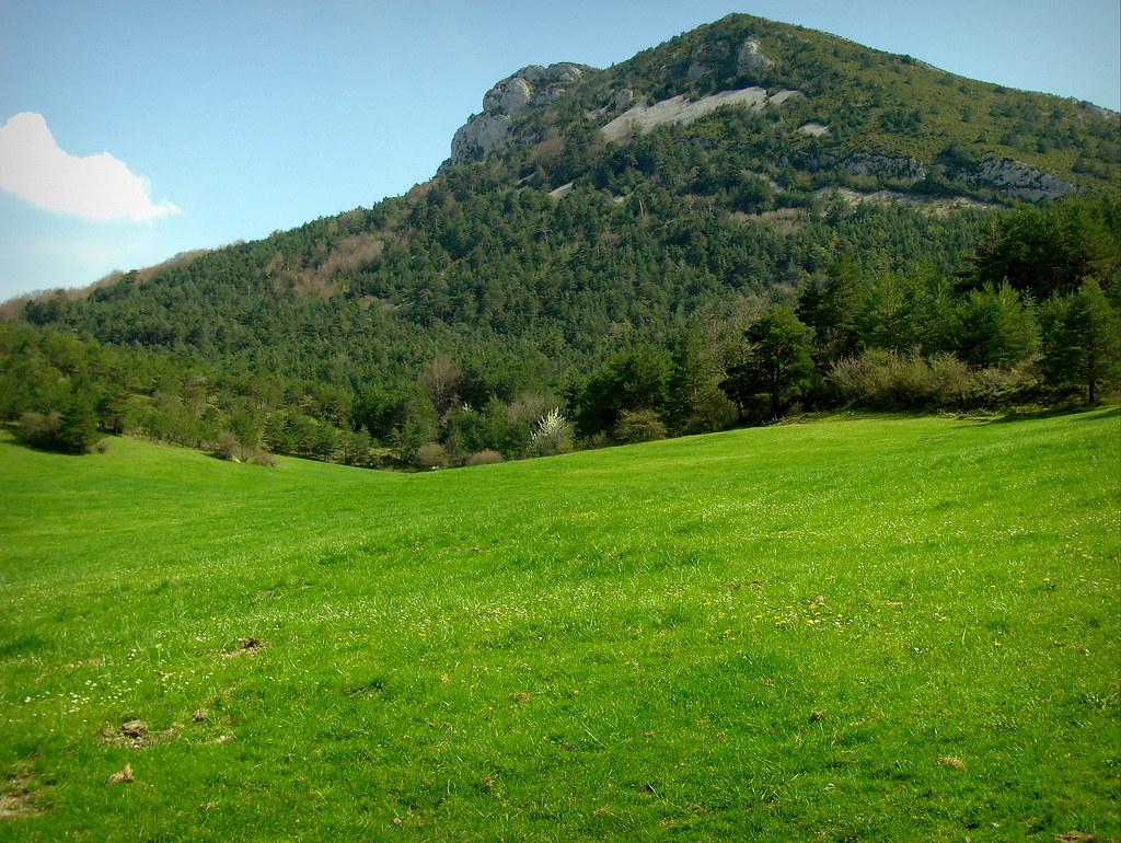 Pack completo en Valderejo: pradera, bosque y montaña
