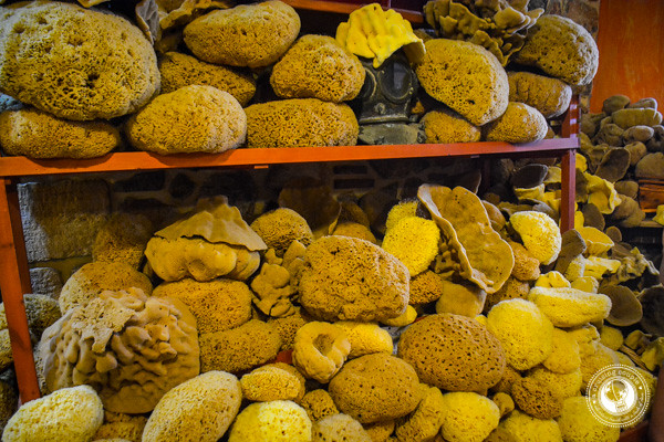 Sponges on Kalymnos Greece