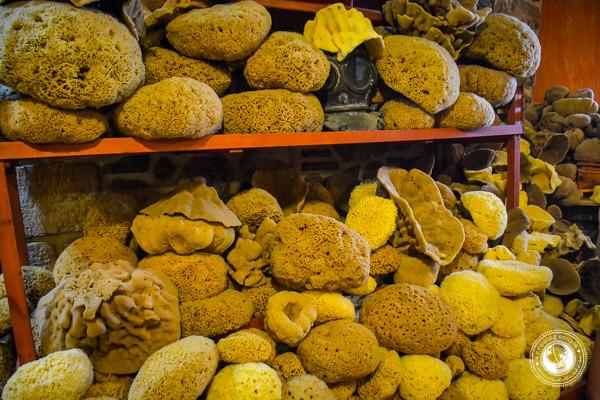 Sponges on Kalymnos Greece