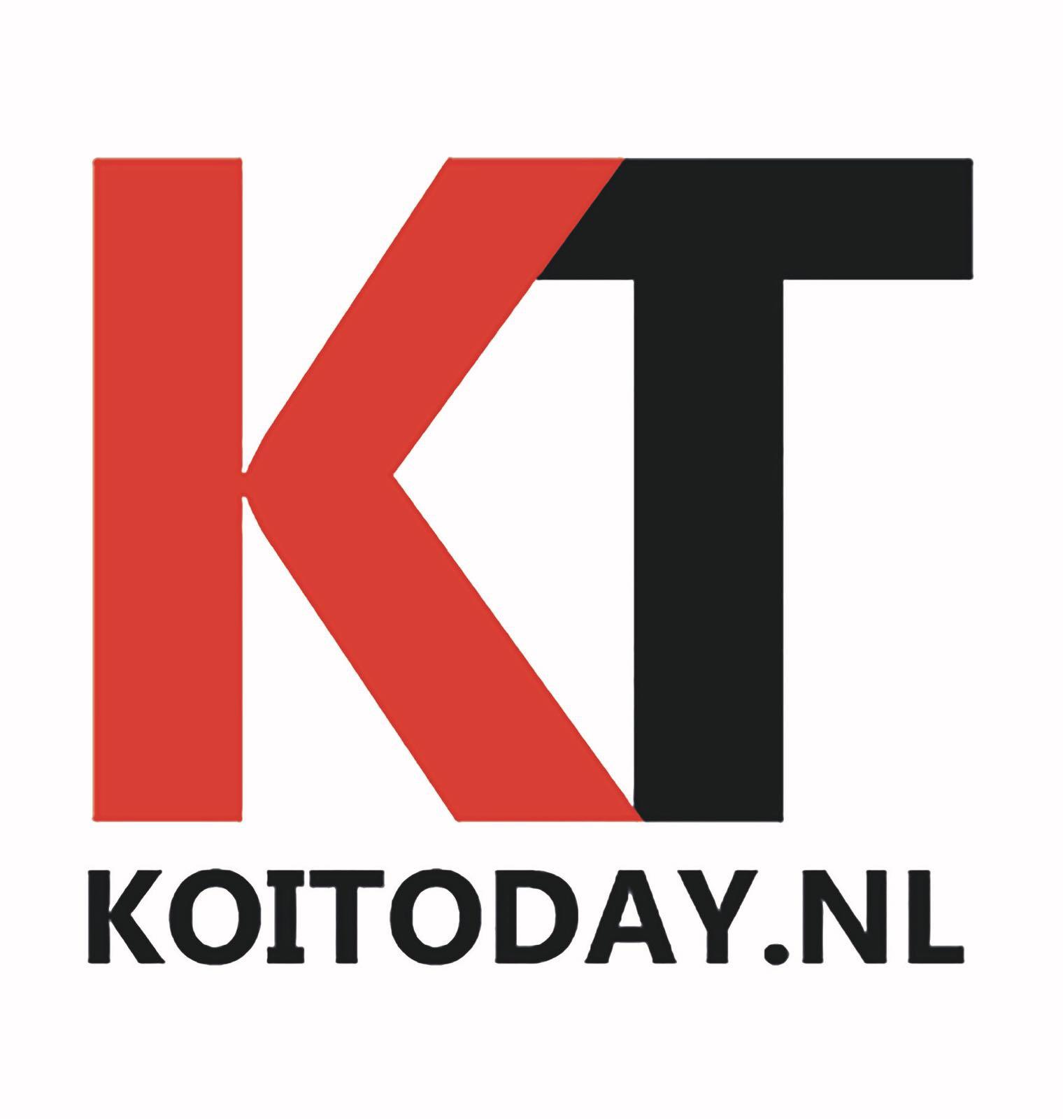 Koi today