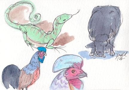 2.21.17 - Animal Kingdom Studies